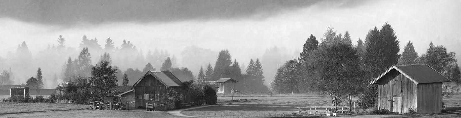 bavière dans la brume